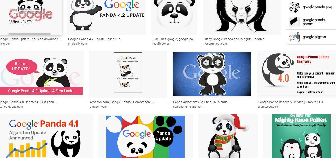 الگوریتم-پاندا-گوگل