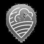 lookins-logo-min